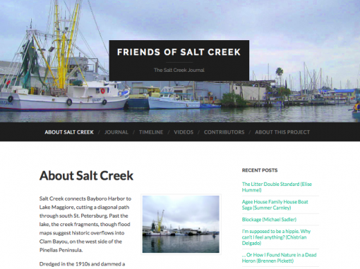 Friends of Saltcreek